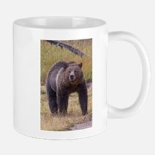 Yellowstone Grizzly Mugs