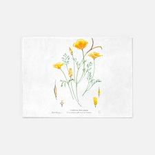 California dune poppy (Eschscholzia californica) 5