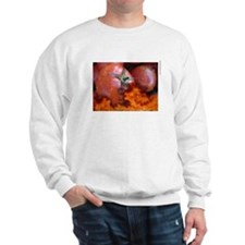 NO Tomatoes Sweatshirt