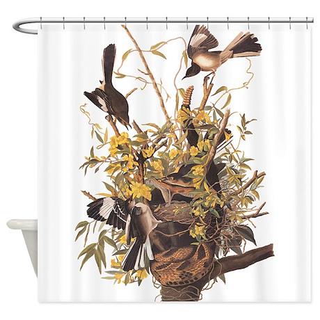 Audubon 39 S Mocking Bird Shower Curtain By Soaringsimple