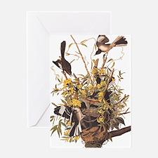 Audubon's Mocking Bird Greeting Cards