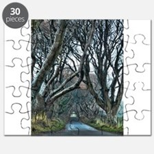 Cool Northern ireland Puzzle