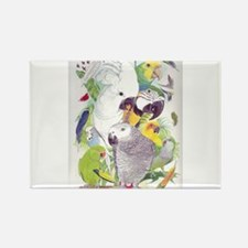 Cute Quaker parrots Rectangle Magnet