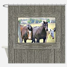 Old window 3 horses Shower Curtain