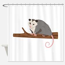 Opossum on Branch Shower Curtain