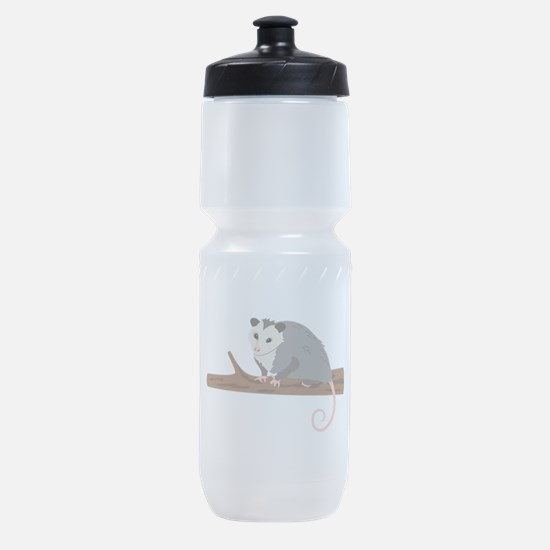 Opossum on Branch Sports Bottle