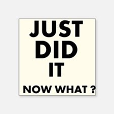 Just DID it, Now What? Sticker