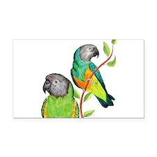 Senegal Parrots Rectangle Car Magnet
