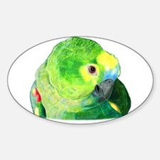 Blue-Fronted Amazon Decal