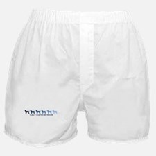 Curly Coated Retriever (blue  Boxer Shorts