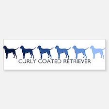 Curly Coated Retriever (blue Bumper Bumper Bumper Sticker
