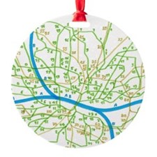 subway and bus map Ornament