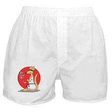 Karate Känguru Boxer Shorts