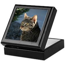Funny Cat with an attitude Keepsake Box