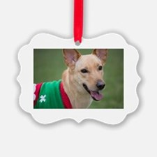 Unique Dingo Ornament