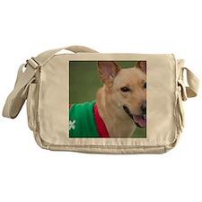 Cute Dingo Messenger Bag
