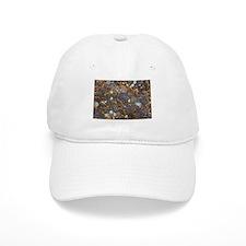 Lichen and Rock Baseball Cap