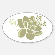 Succulents Base Decal