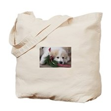 Pyr Pup -- Tote Bag