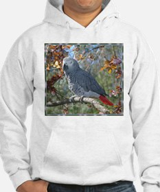 Sunlight on Feathers Hoodie