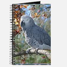 Sunlight on Feathers Journal