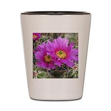 Purple Pitaya Blooms Shot Glass