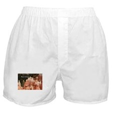 Bryce Canyon, Utah 3 (caption) Boxer Shorts