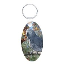 Sunlight on Feathers Keychains