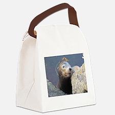Sea Lion Having Fun Canvas Lunch Bag