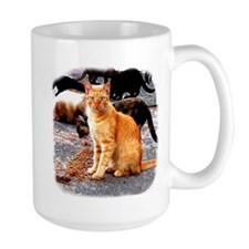 Orange Cat Mugs