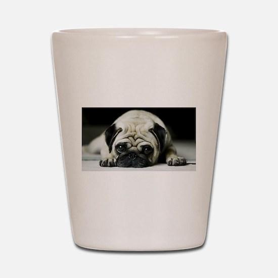 Pug Puppy Shot Glass