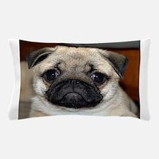 Pug Puppy Pillow Case
