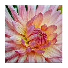 Beautiful pink dahlia Tile Coaster