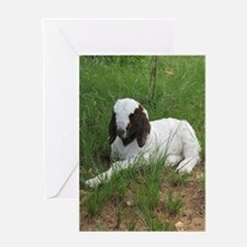 Baby Billy Goat Greeting Cards