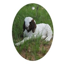 Baby Billy Goat Ornament (Oval)