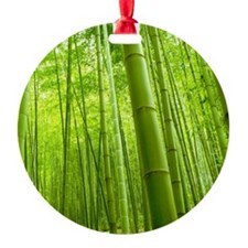 Bamboo Perspective Ornament