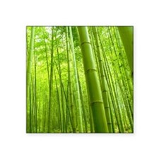 Bamboo Perspective Sticker
