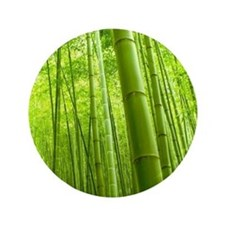 "Bamboo Perspective 3.5"" Button"
