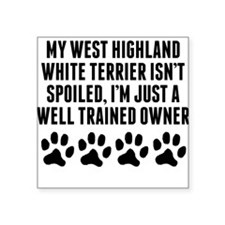 Well Trained West Highland White Terrier Owner Sti