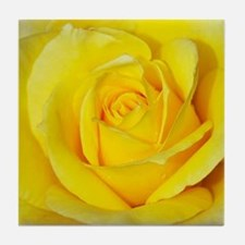 Beautiful single yellow rose Tile Coaster