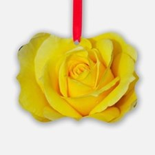Beautiful single yellow rose Ornament