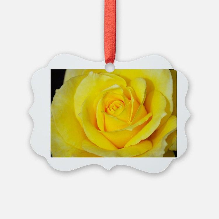 Beautiful single yellow rose Ornament