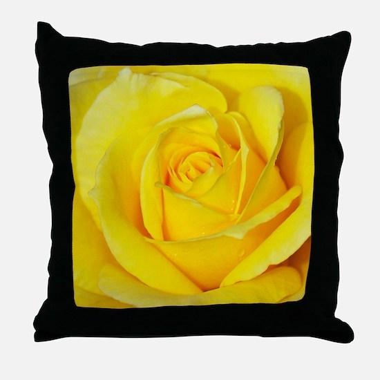Beautiful single yellow rose Throw Pillow