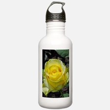 Singe yellow rose in s Water Bottle