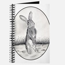Funny Rabbit drawings Journal