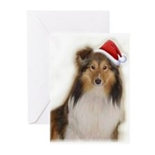 Unique Rescue sheltie Greeting Cards (Pk of 10)