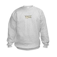 Waco Biplane Sweatshirt