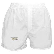 Waco Biplane Boxer Shorts