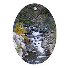 Boulder Falls Oval Ornament