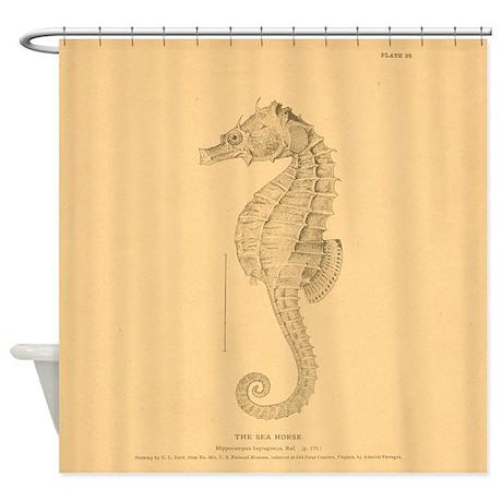 vintage seahorse shower curtain